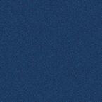ral 5003 1 - Drzwi stalowe płaszczowe - Wiśniowski