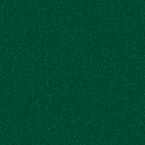 ral 6005 3 - Drzwi stalowe płaszczowe - Wiśniowski
