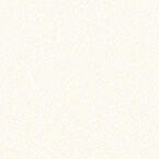 ral 9010 modern white 1 - Drzwi stalowe płaszczowe - Wiśniowski
